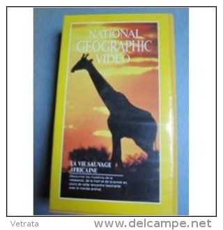 National Geographic : Cassette V H S , La Vie Sauvage Africaine, 1990 - Documentaires