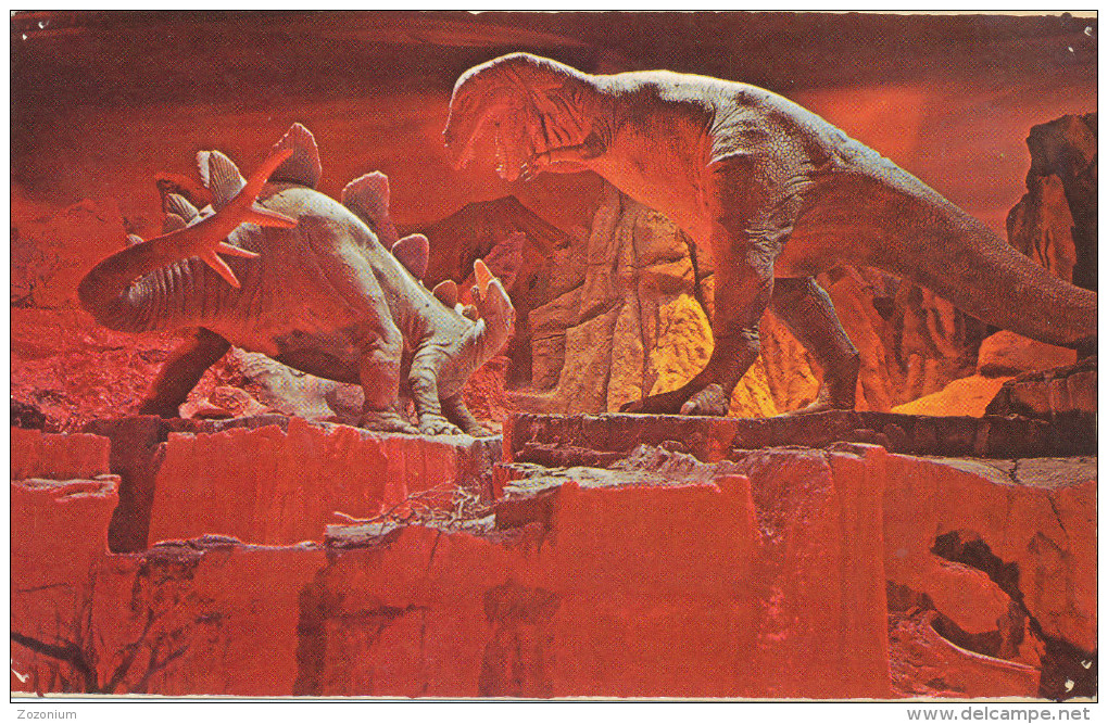 DISNEYLAND Primeval World ,  Stegosauras & Tyrannosaurus Rex,  Vintage Old Photo Postcard - Disneyland