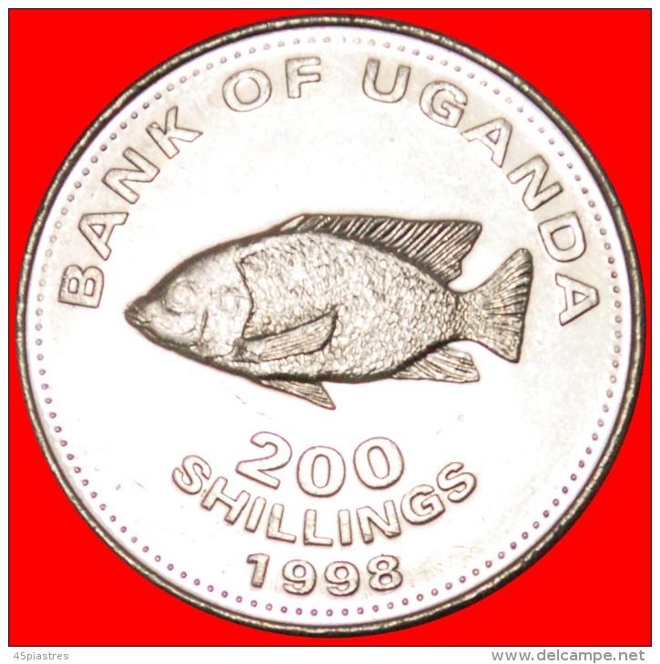 ★FISH: UGANDA ★ 200 SHILLINGS 1998! MINT LUSTER! LOW START ★ NO RESERVE! - Ouganda