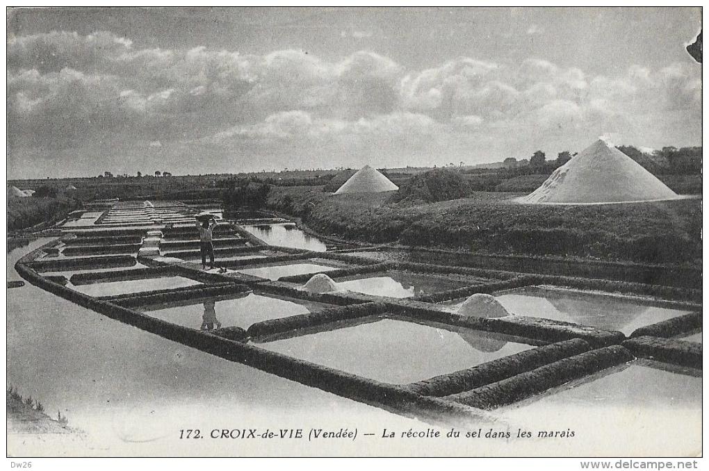 Palétuvier - Croix-de-Vie (Vendée) - La Récolte Du Sel Dans Les Marais Salants - Edition J. Nozais - Carte Non Circulée - Other
