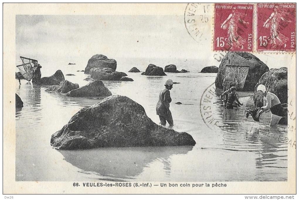 Veules-les-Roses (Seine-Inférieure) - Un Bon Coin Pour La Pêche - Edition Degouy - Carte N°66 - Veules Les Roses