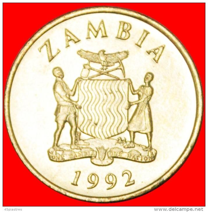 ★FALCONS: ZAMBIA ★ 1 KWACHA 1992 UNC MINT LUSTER! LOW START ★ NO RESERVE!!! - Zambia
