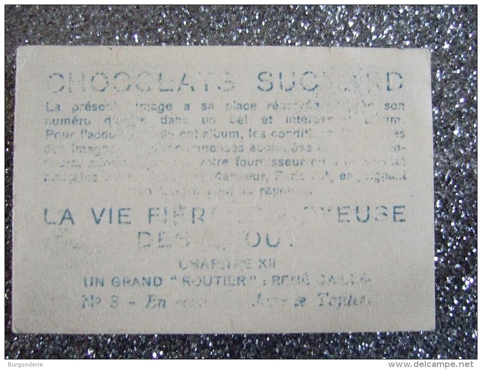 CHOCOLAT SUCHARD / LA VIE FIERE ET JOYEUSE DES SCOUTS - Suchard