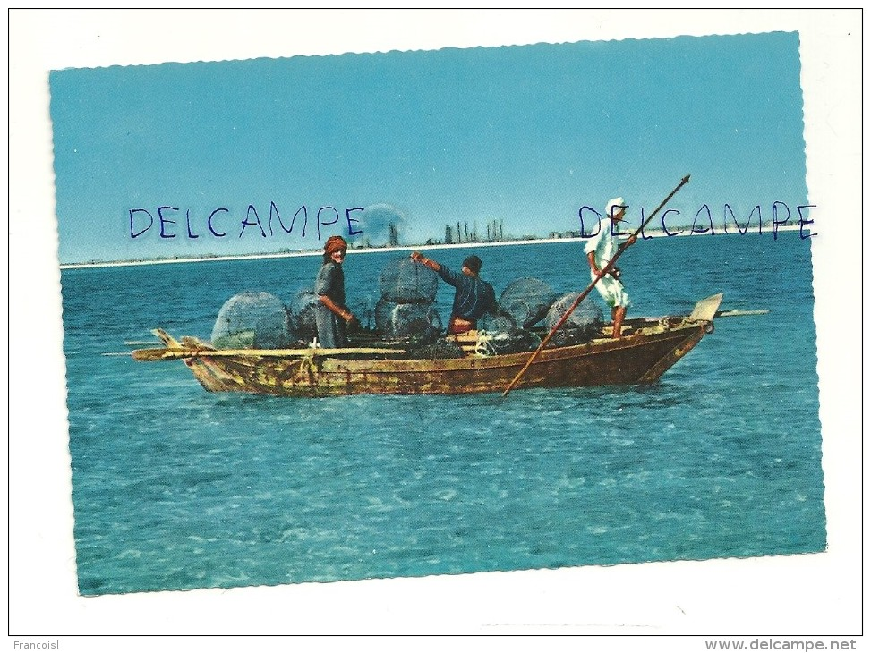 Arabie Saoudite. Pêcheurs De Perles Dans Le Golf. Dhahran Area - Arabie Saoudite