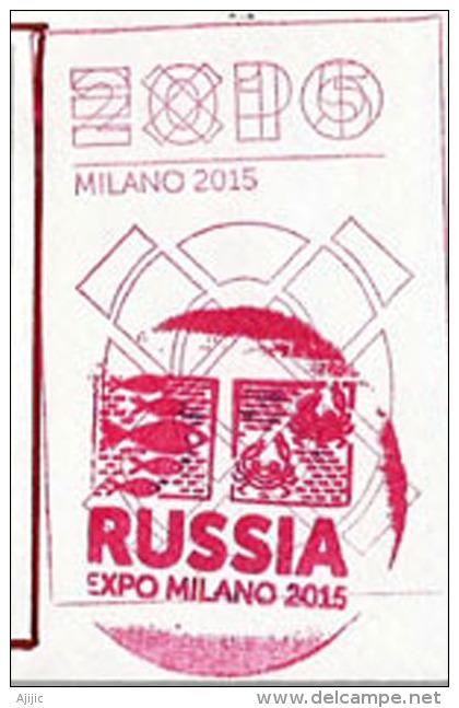 """RUSSIE.EXPO MILANO 2015.""""NOURRIR LA PLANETE"""" Belle Lettre Du Pavillon De La Fédération De RUSSIE à MILAN, - Abarten & Kuriositäten"""