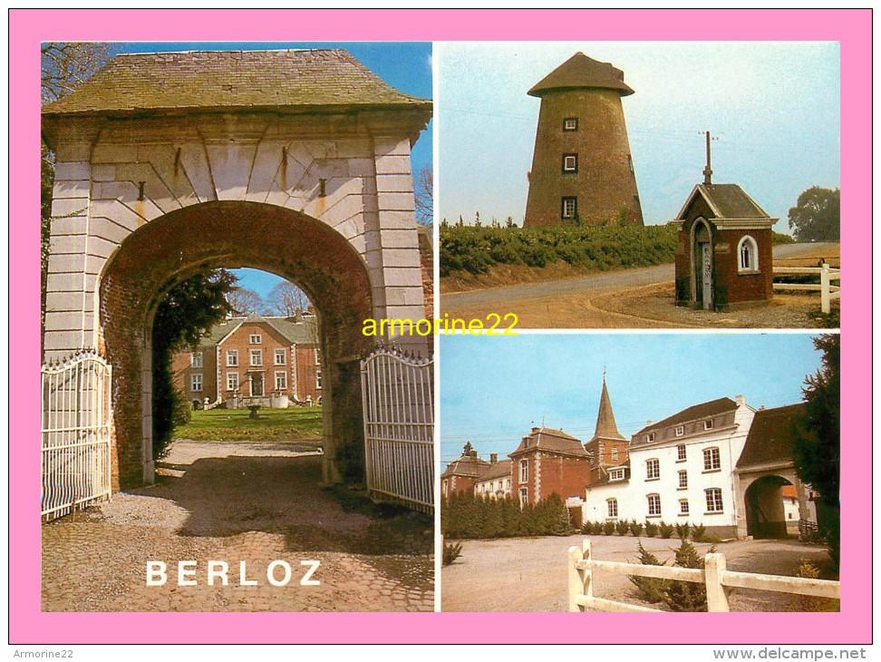 CPM BERLOZ Entrée Du Chateau - Berloz