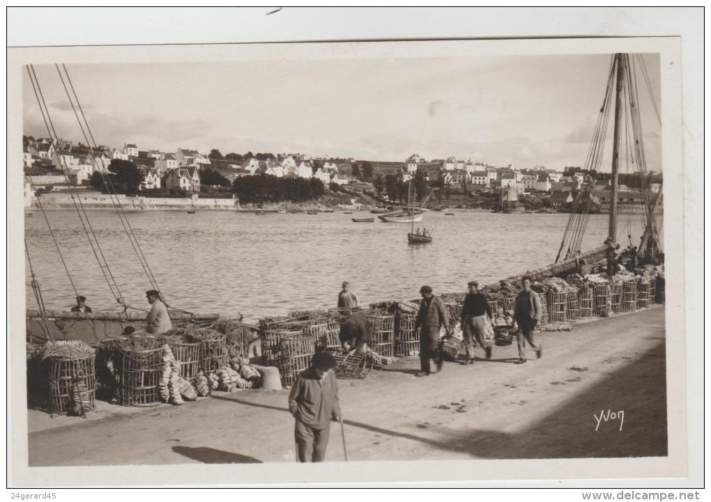 CPSM AUDIERNE (Finistère) - Le Port Et Vue Sur Poulgoazec - Audierne