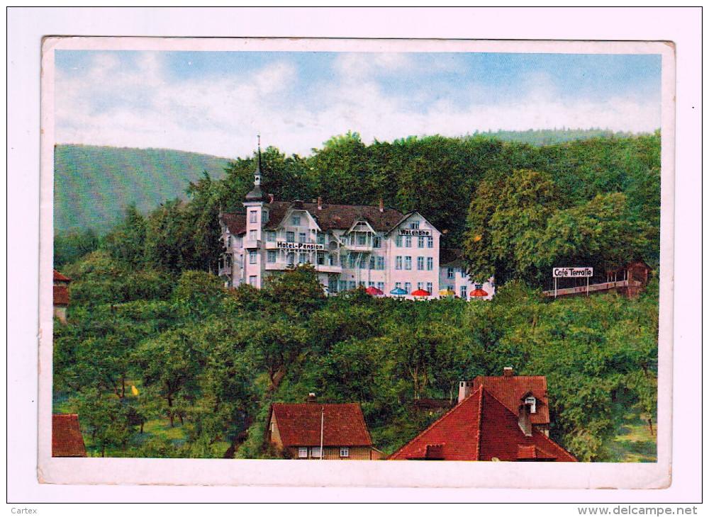 9653  CPM  ILSENBURG : Hotel Pension Waldhöhe - Ilsenburg