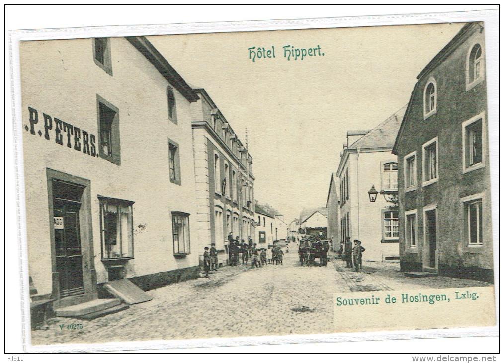 Hotel Hipert HOSINGEN (Ed.N.Schummacher Mondorf-les-Bains)voir Deux Scan 1906 P.PETERS - Cartes Postales
