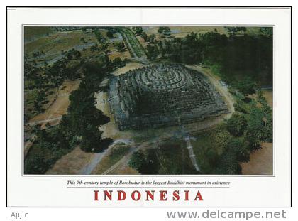 INDONESIE. Borobudur, Le Plus Grand Temple Boudhiste,  Carte Postale Neuve, Non Circulée - Indonesia