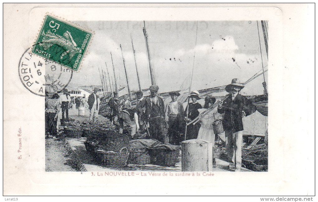 11...AUDE...PORT LA NOUVELLE.....LA VENTE DE LA SARDINE A LA CRIEE - Port La Nouvelle