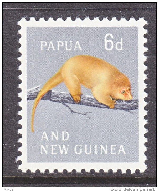 PAPUA  NEW  GUINEA  156     *  RODENTS  GOLDEN  TREE  OPOSSUM - Knaagdieren