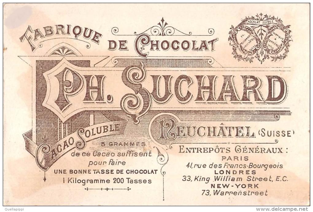 """04102 """"FABRIQUE DE CHOCOLAT PH. SUCHARD - NEUCHATEL - SUISSE"""" ANIMATO, CONTADINI, LA VENDEMMIA,  FIGURINA ORIGINALE - Cioccolato"""
