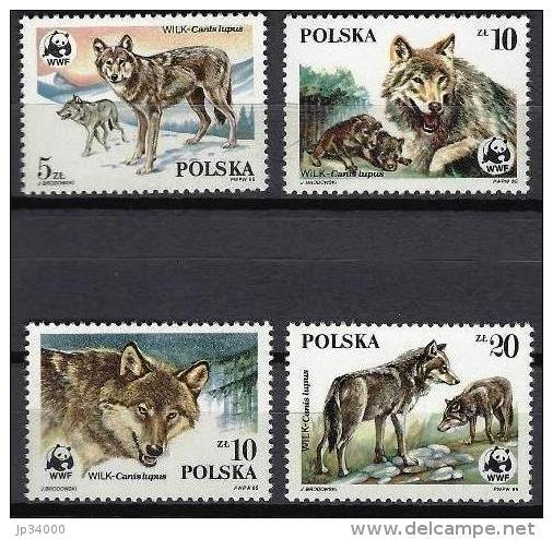 POLOGNE, WWF, Loups . Yvert N° 2787/90 ** Neuf Sans Charniere. MNH. - W.W.F.