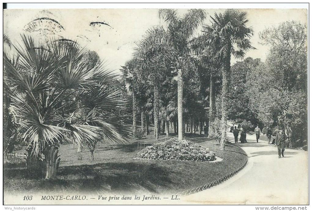 AK 0374  Monte Carlo - Vue Prise Dans Les Jardins Um 1909 - Monte-Carlo
