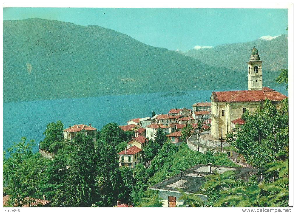 Pino (Varese, Lombardia) Lago Maggiore, Maccagno Con Pino, Panorama - Varese
