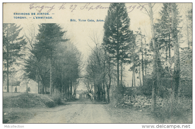 BELGIQUE TORGNY / L'Ermitage / - Autres