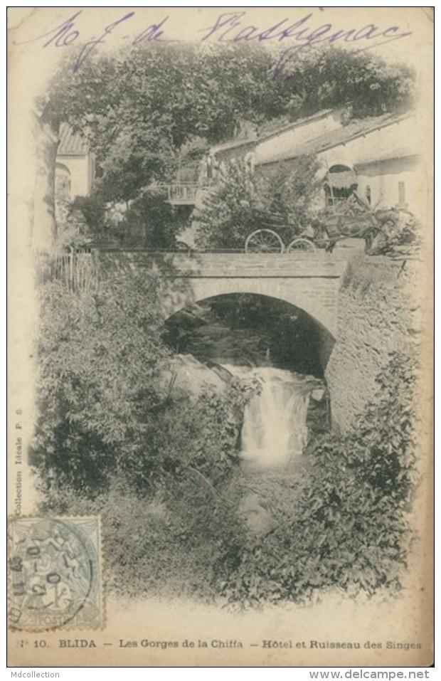 DZ BISKRA / Les Gorges De La Chiffa, Hôtel Et Ruisseau Des Singes / - Biskra