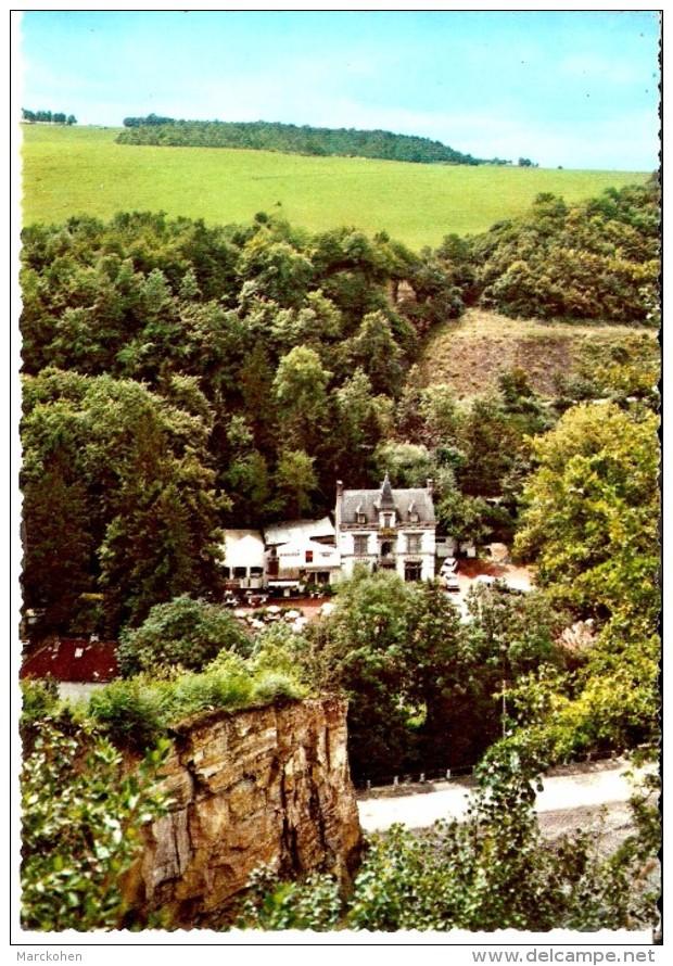 MAIZERET - NAMÊCHE (5300) : ELEVAGE DE CASTORS DU CHÂTEAU DE VIL EN VAL (Vallée Du Samson). CPSM. - Andenne