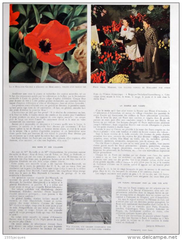 FRANCE ILLUSTRATION N° 147 / 24-07-1948 CHATEAUBRIAND JEAN MOULIN DÉFILÉ 14 JUILLET TURQUIE TULIPES HOLLANDE MAREY CINÉ - Giornali