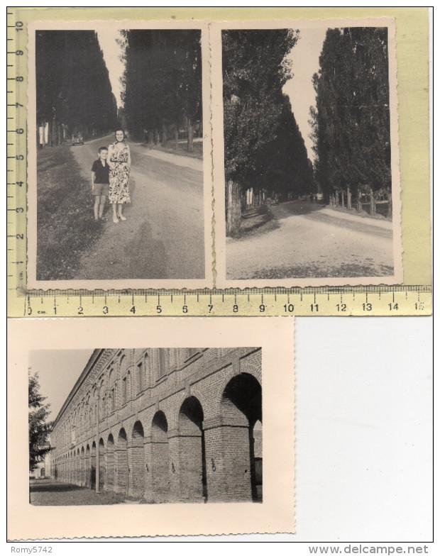 Sabbioneta MN - 3 Fotografie - 1956 - Fp - Mantova