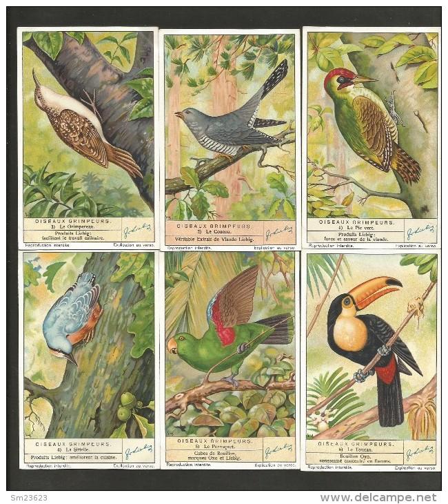 LIEBIG Sammelbilder  (13) , 6 Stück - Oiseux Grimpeurs - - Liebig