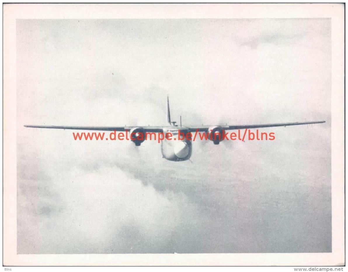 1953 Pembroke C Mk.1 - Aviation
