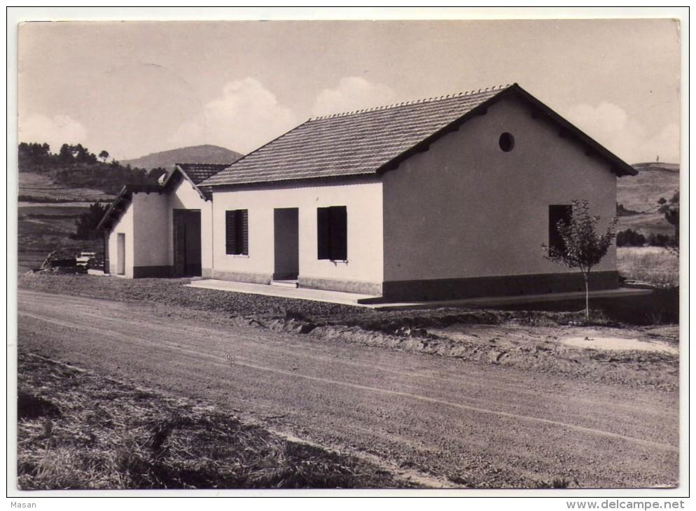SILA - CASA CANTONIERA -  Viaggiata 1955 - Other Cities