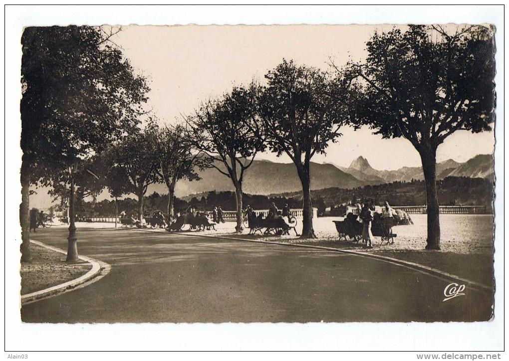 CPSM - 64 - PAU - La Terrasse Et Boulevard Des Pyrénnées - Pau