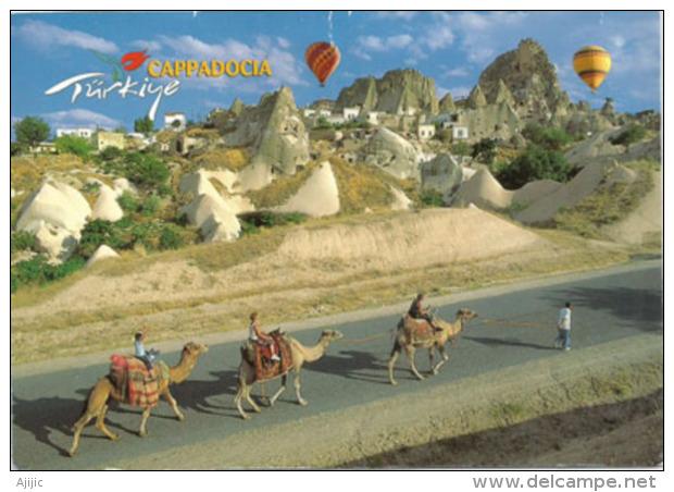 Promenade En Chameaux En Cappadoce, Région De Nevsehir, Belle Carte Adressée ANDORRE, Deux Photos - Turquie
