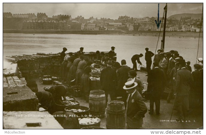 GB PEEL / The Hearing Fisheries / GLOSSY CARD - England
