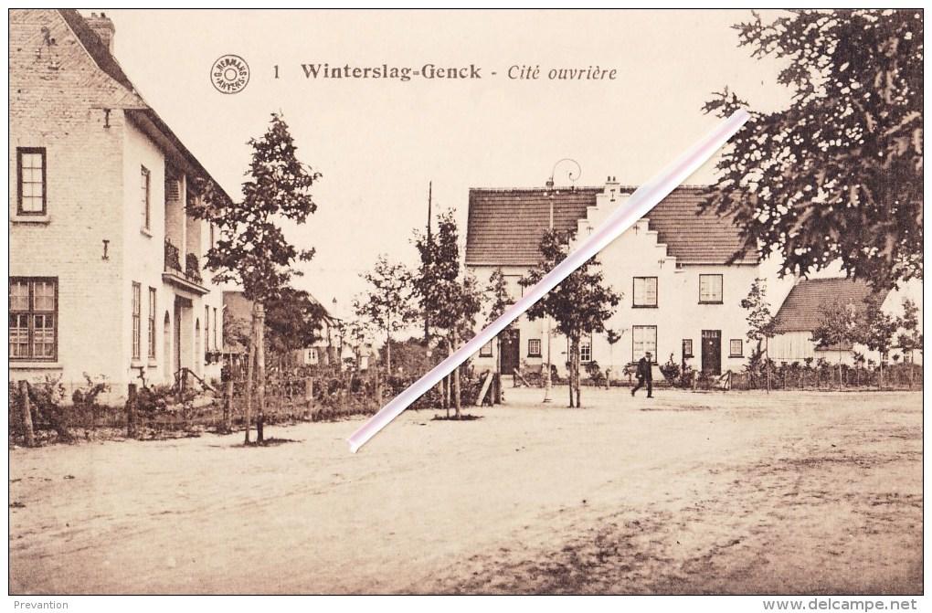 WINTERSLAG-GENCK - Cité Ouvrière - Genk