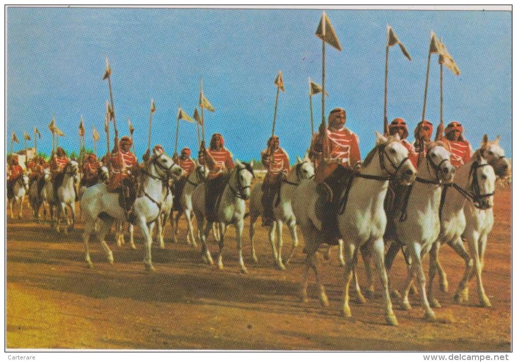 SAUDI ARABIA,ARABIE SAOUDITE,SAUDITA,ARAB EMIRATES,CAVALIER,MILITAIRE ROYAL - Arabie Saoudite