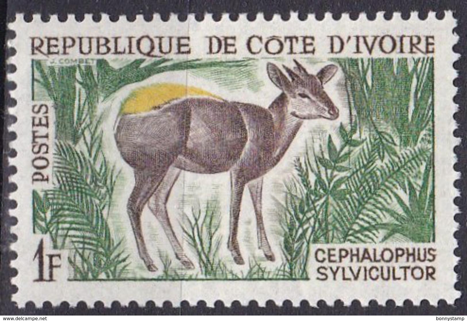 Costa D'Avorio, 1963/64 - 5f  Water Chevrotain - Nr.204 Usato° - Costa D'Avorio (1960-...)