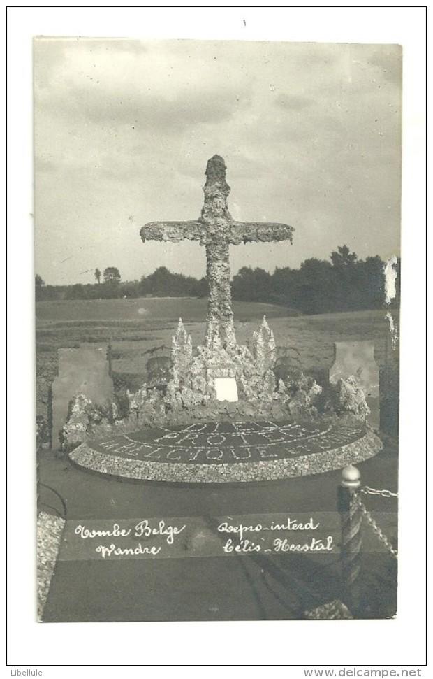 Guerre 14-18 : Tombe Belge Wandre - Guerra 1914-18