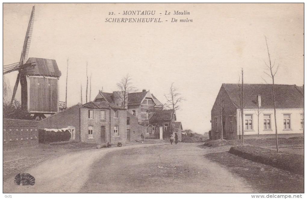 Scherpenheuvel - De Molen - Scherpenheuvel-Zichem