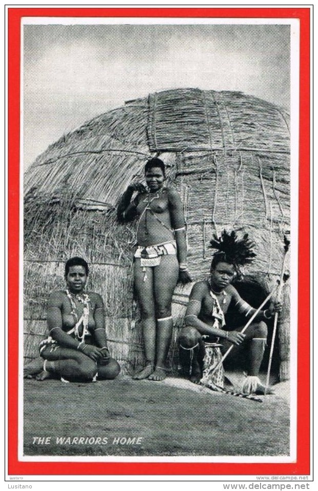 South Africa - The Warriors Home - Guerreiers - Nude Black Women Femmes Seins Nus Topless RPPC ( 2 Scans ) - South Africa