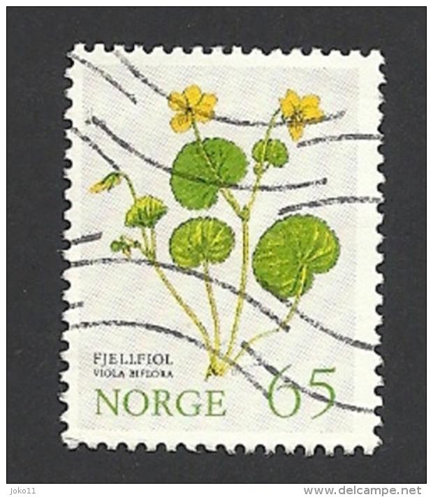 Norwegen, 1973, Mi.-Nr. 671, Gestempelt - Norwegen