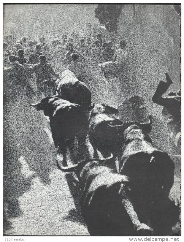 Livre De  Luis Del Campo - Historia Tragica Del Encierro De Pamplona - Histoire Et Art