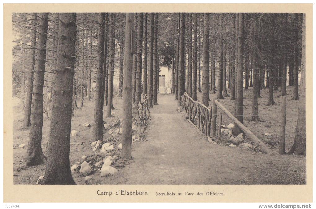 CPA - Le Camp D´Elsenborn - Sous Bois Au Parc Des Officiers - Elsenborn (camp)