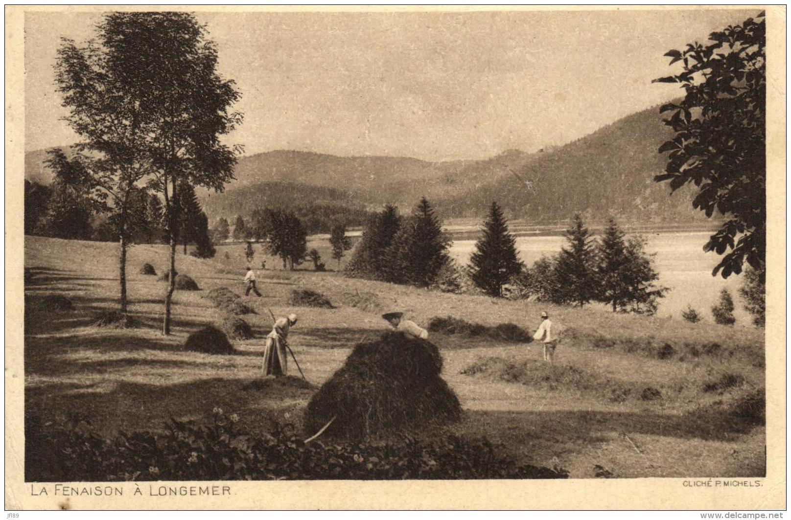 98634 - Longemer (88) La Fenaison - Cultures