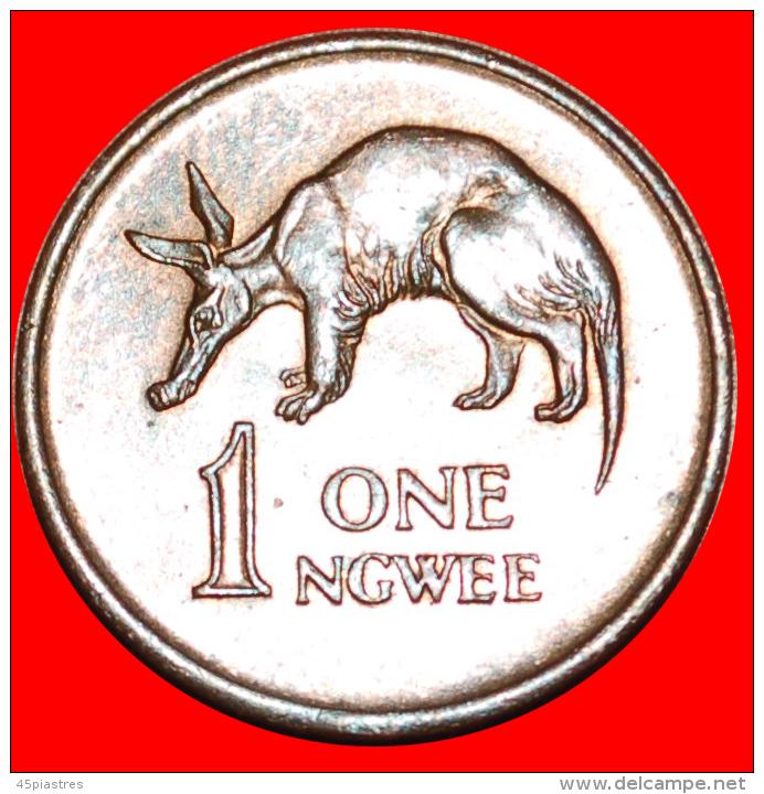 § ANTEATER: ZAMBIA ★ 1 NGWEE 1968! LOW START ★ NO RESERVE! Kaunda (1964-1991) - Zambia