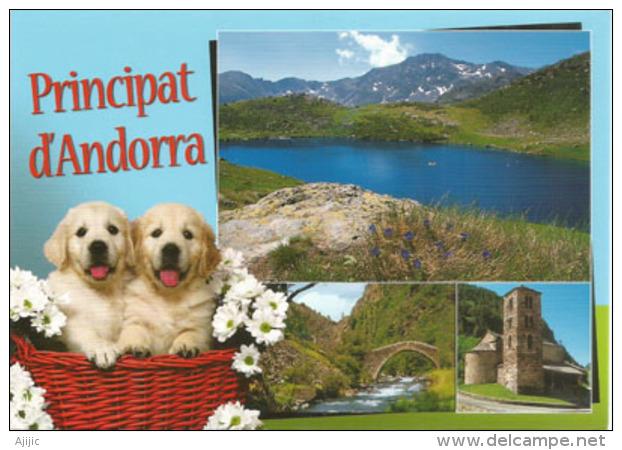 Souvenirs DAndorre, Carte Postale Neuve, Non Circulée. - Andorra