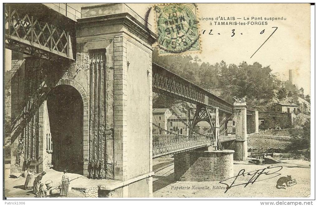 CPA  TAMARIS LES FORGES, Le Pont Suspendu  12944 - Altri Comuni