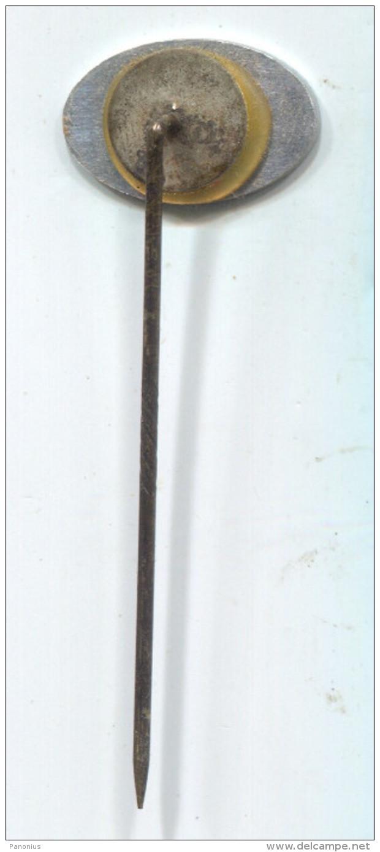 PFIZER, USA - Pharmaceutical Industry, Vintage Pin Badge - Medical