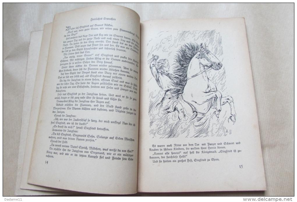 Helden Streiten Götter Ringen Par Gerhard Krügel 116p 1943 - Bücher, Zeitschriften, Comics