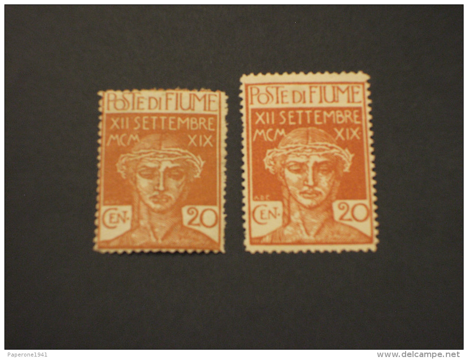 FIUME - 1920 LEGIONARI 20 C., Due Tipi - NUOVO(+) - 8. Occupazione 1a Guerra