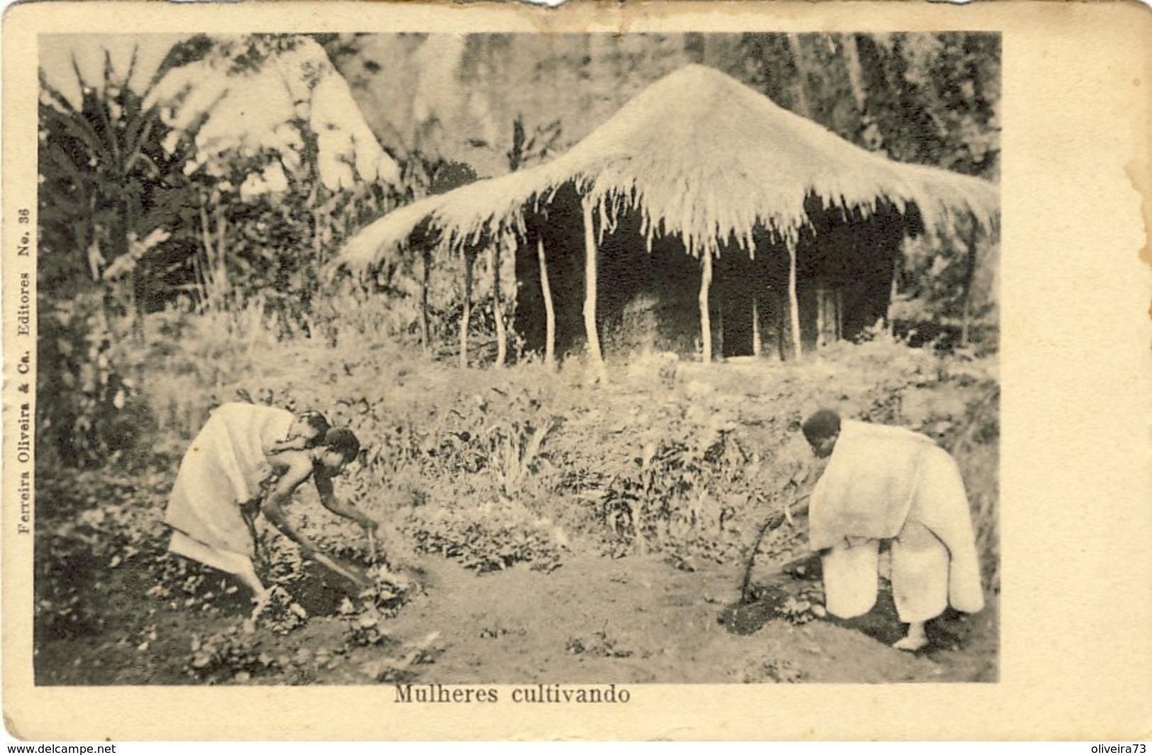 GUINÉ  BISSÁU, PORTUGUESA, Mulheres Cultivando, 2 Scans - Guinea-Bissau