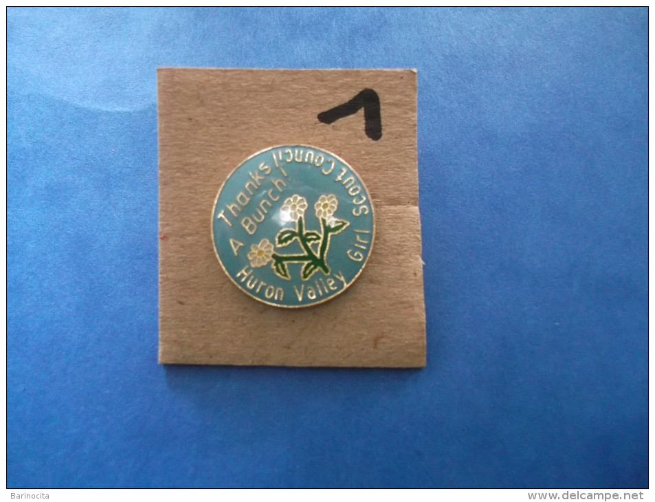 "PIN´S -  SCOUTISMES - Huron Valley Girl Scout Coucil "" Thanks A Bunch  ! "" - Voir Photo ( 1 ) - Verenigingen"
