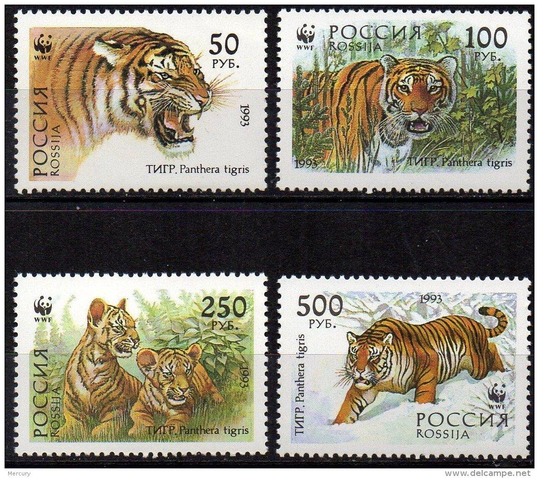 RUSSIE - Superbe Série Complète Neuve De Tigres - Unused Stamps
